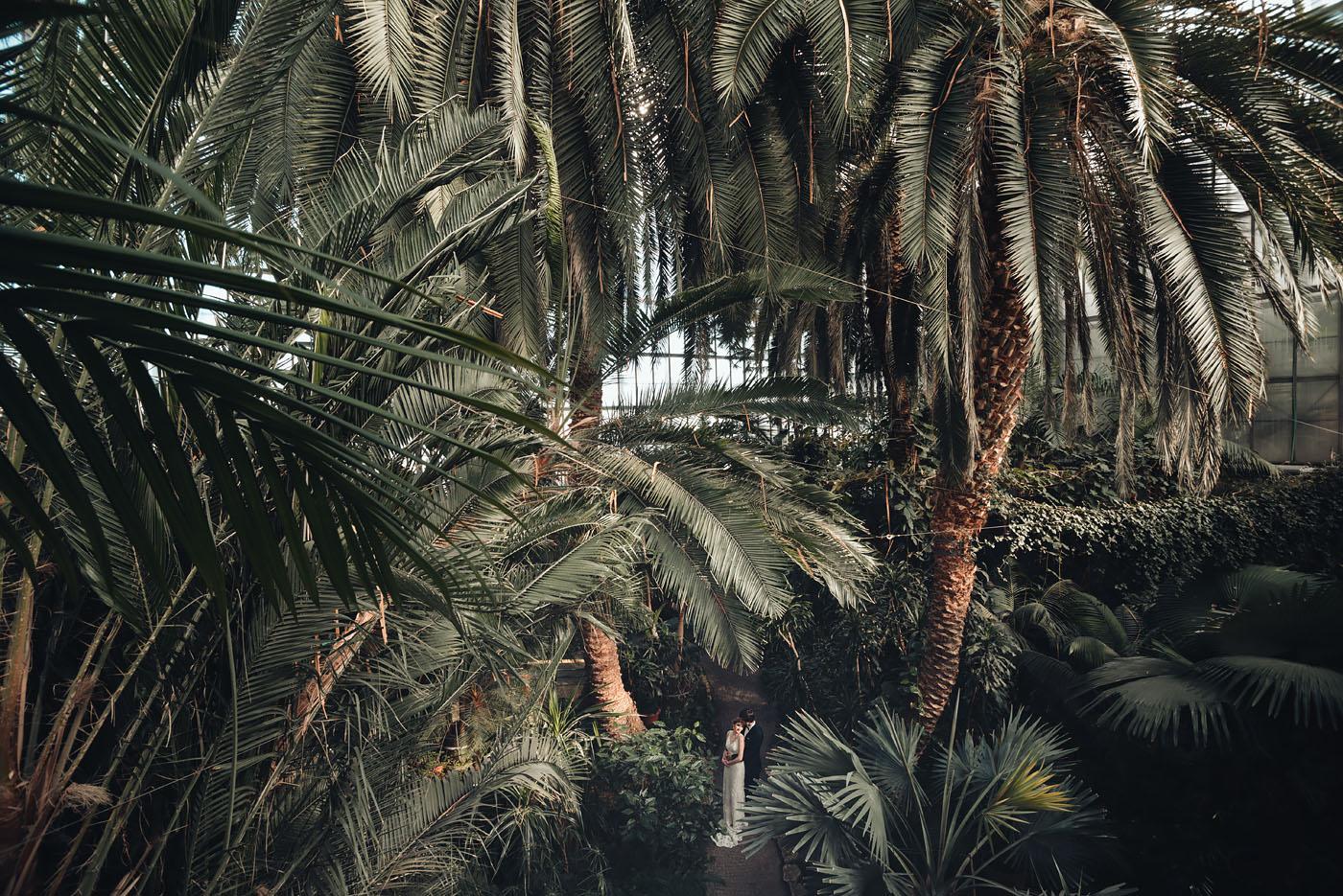 sesja-palmiarnia